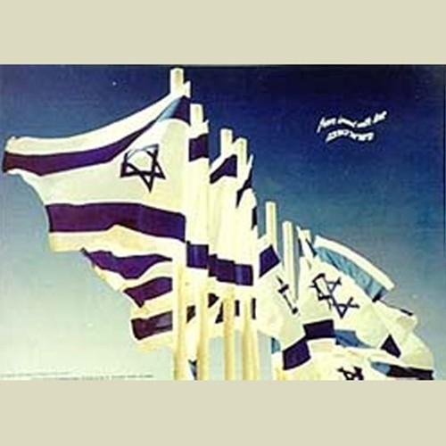 FLAGS (JP-212)