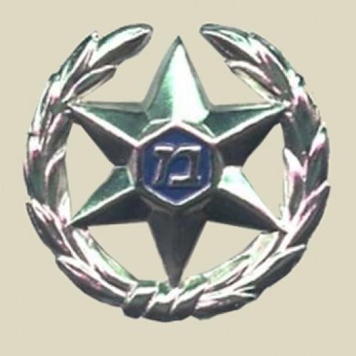 Israel Police hat insignia (24-3)
