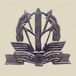 IDF Signal Corps beret insignia (1-7)