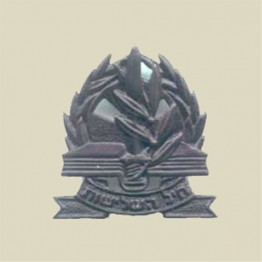 Adjutancy beret insignia (1-14)