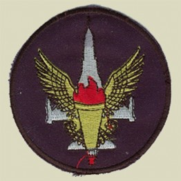 Israel Air Force Squadron Patch (IAF-D1)