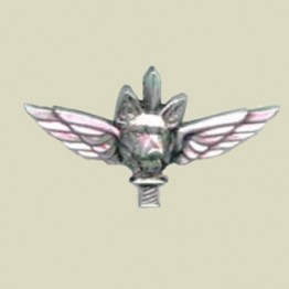 OKETZ Badge-New (25-50)