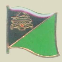 IDF Armored Corps Insignia (10-12)