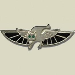 669 -Airborne combat search & rescue (15-58)