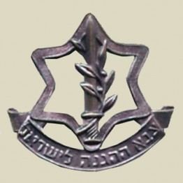 Zahal - Israel Defense Forces beret insignia (1-1)