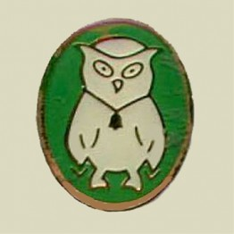 Intelligence Owl (9-54)