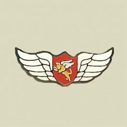 Jordan Valley Lions (15-35)
