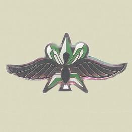 Intelligence Wings (9-8)