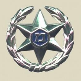 Police Cap Badge (A24-3)