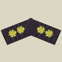 Lieutenant Colonel -Navy rank-cloth (r-17)