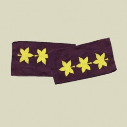 Colonel -Navy rank-cloth (r-14)