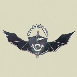 Senior Commando - Naval Commando Warrior (4-16)