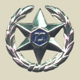 Israel Police hat insignia (24-3)