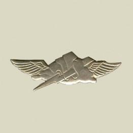 Anti Terror Unit Insignia (10-18)