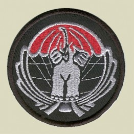 The Elephants Squadron Patch (IAF-7)